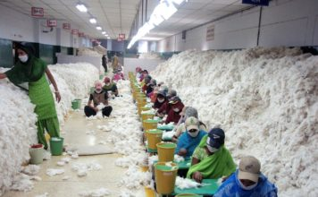 Figure 1: Inside of an Indian Spinning Industry- sorting out cotton fiber.
