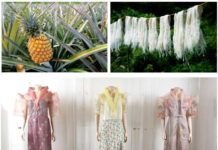 Figure 1: Pineapple not only good for health as fruit, its leaf have been used as fiber for producing luxury cloths in the history.