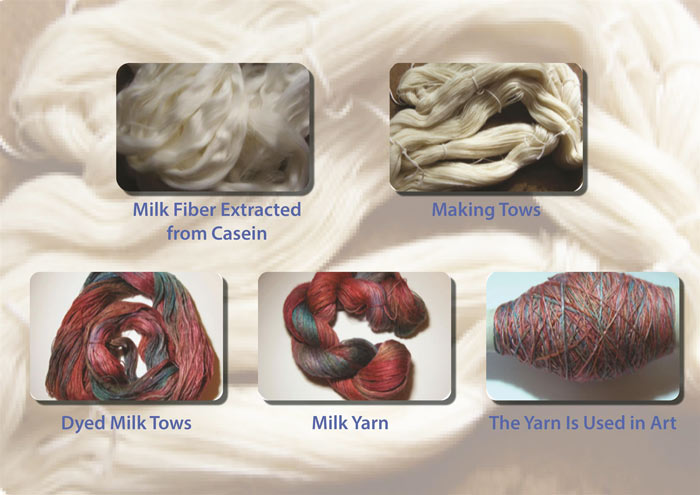Extraction and spinning of milk fiber