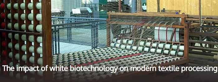impact of white biotechnology on textile processing