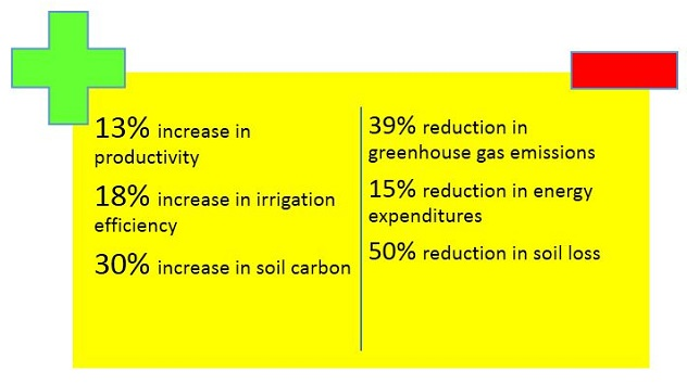 The 2025 US cotton sustainability goals