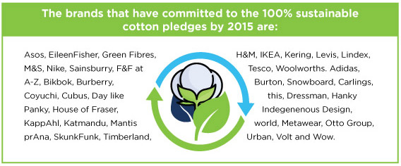 100% sustainable cotton brands