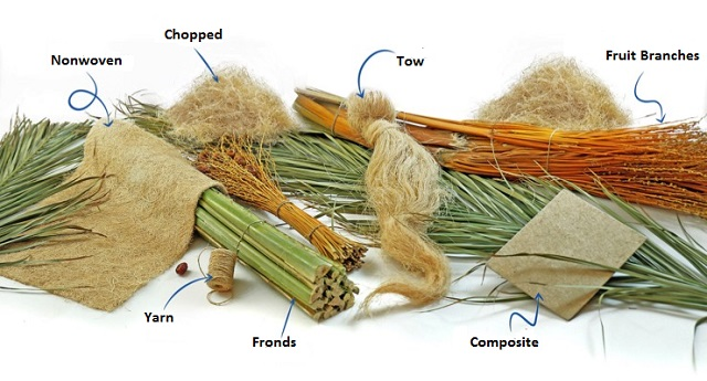 Textile-fiber-from-date-palm