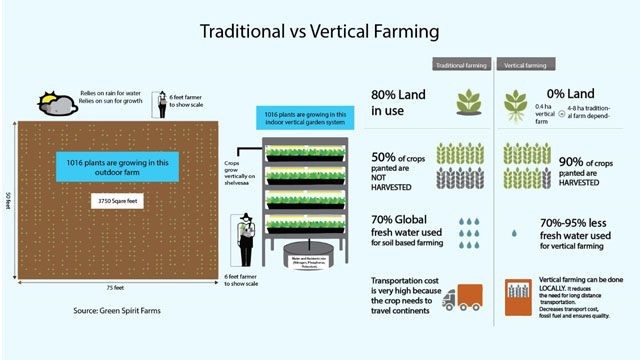 Traditional-Vertical-Farming
